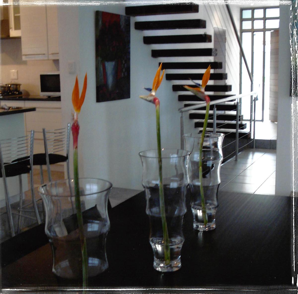Strey Architects_ Top Billing  (3)